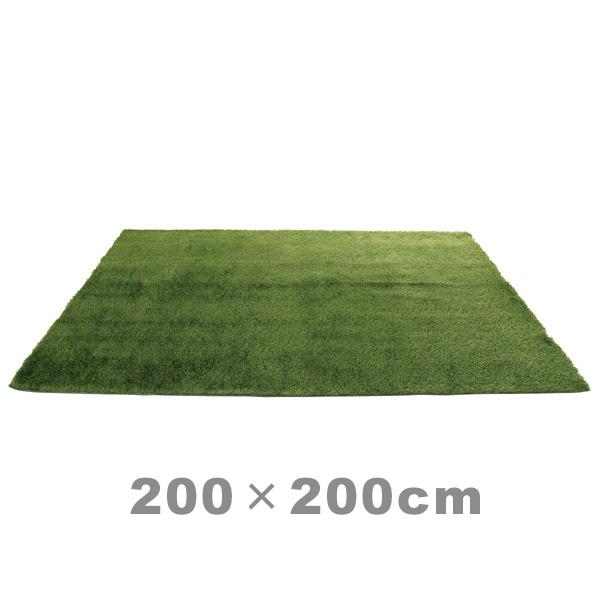 ラグマット グリーン シャギーラグ 緑 200×200 シャギー ラグ 正方形 リビングラグ かわいい 子供部屋 じゅうたん 芝生 絨毯 草原 おしゃれ アクセントラグ 草 8畳 6畳 カーペット オシャレ インテリア ホットカーペット対応 床暖房対応 6畳 8畳 グラスラグ