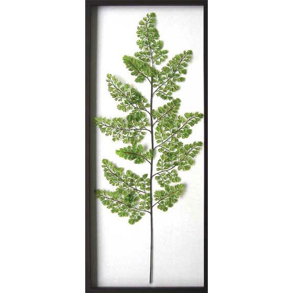 リーフパネル 造花 フェイクグリーン リーフフレーム 観葉植物 ウォールパネル グリーン 人工観葉植物 額 アートパネル アートフレーム ディスプレイ フレーム Adiantum raddianun インテリア 壁掛け ウォール アート パネル リーフ 壁 額縁 シンプル 壁飾り