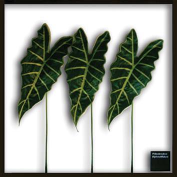 リーフパネル 造花 フェイクグリーン 人工観葉植物 観葉植物 額 リーフフレーム ウォールパネル グリーン アートパネル アートフレーム ディスプレイ フレーム Alocasia Amazonica インテリア 壁掛け ウォール アート パネル リーフ 壁 額縁 シンプル 壁飾り