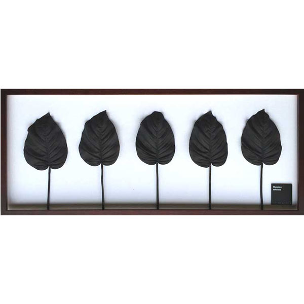 リーフパネル ホスタ ギボウシ アート ウォールパネル 壁掛け 葉 グリーンパネル アートパネル モダン 植物 インテリアグリーン アートフレーム シンプル 北欧 インテリア ナチュラル リビング 引っ越し祝い 新築祝い プレゼント IFF51072 Hosta.cv BK ブラック