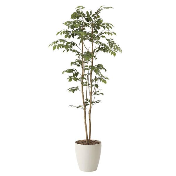 光触媒 観葉植物 イミテーション 植物 枯れない 母の日 祝い ギフト 抗菌 人工観葉植物 インテリア 記念日 フェイクグリーン 消臭 贈り物 高さ160cm フェイク マウンテンアッシュ1.6 おすすめ リビング