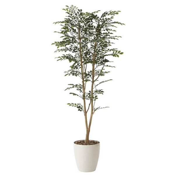 光触媒 観葉植物 枯れない イミテーショングリーン 植物 祝い インテリア 人工観葉植物 贈り物 抗菌 ギフト 消臭 記念日 母の日 高さ160cm グリーン ゴールデンツリー1.6 おすすめ リビング