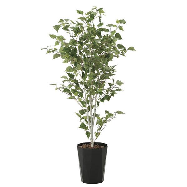 光触媒 観葉植物 枯れない イミテーショングリーン 植物 祝い インテリア 人工観葉植物 贈り物 抗菌 ギフト 消臭 記念日 母の日 高さ140cm グリーン 白樺1.4 おすすめ リビング