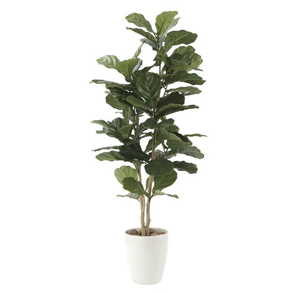 光触媒 観葉植物 イミテーション 植物 枯れない 人工観葉植物 インテリア 抗菌 記念日 フェイクグリーン ギフト 母の日 祝い 消臭 贈り物 高さ135cm フェイク カシワバゴム1.35 おすすめ リビング