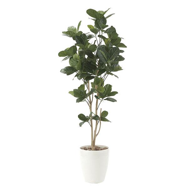 光触媒 観葉植物 イミテーション インテリア 記念日 フェイクグリーン 植物 抗菌 枯れない 人工観葉植物 ギフト 母の日 祝い 消臭 贈り物 高さ125cm フェイク パンの木1.25 おすすめ リビング