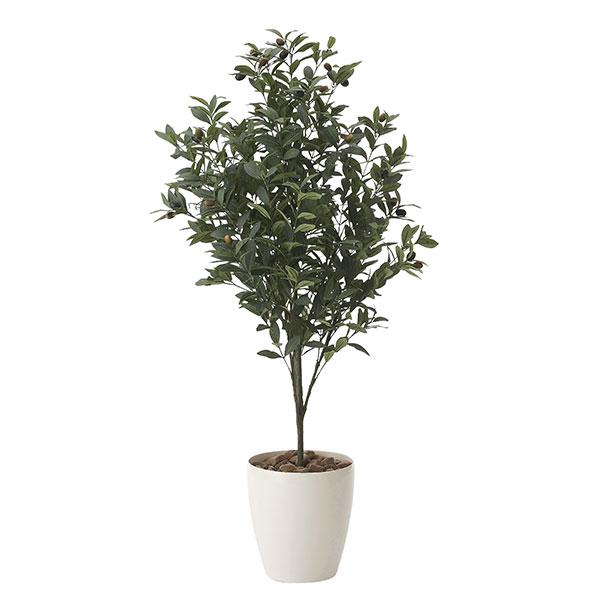 光触媒 観葉植物 イミテーション インテリア 記念日 フェイクグリーン 植物 抗菌 枯れない 人工観葉植物 ギフト 母の日 祝い 消臭 贈り物 高さ110cm フェイク オリーブ1.1 おすすめ リビング