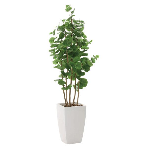 人工観葉植物 光触媒 観葉植物 フェイクグリーン 人工植物 アーバンシーグレープ1.8 インテリア 高さ180cm 抗菌 消臭 フェイクグリーン 防汚 おしゃれ 開店祝い おすすめ リビング