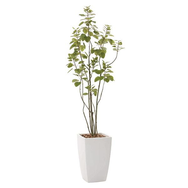 人工観葉植物 光触媒 観葉植物 フェイクグリーン 人工植物 アーバンブランチツリー1.8 インテリア 高さ180cm 防汚 消臭 抗菌 おしゃれ 開店祝い おすすめ リビング