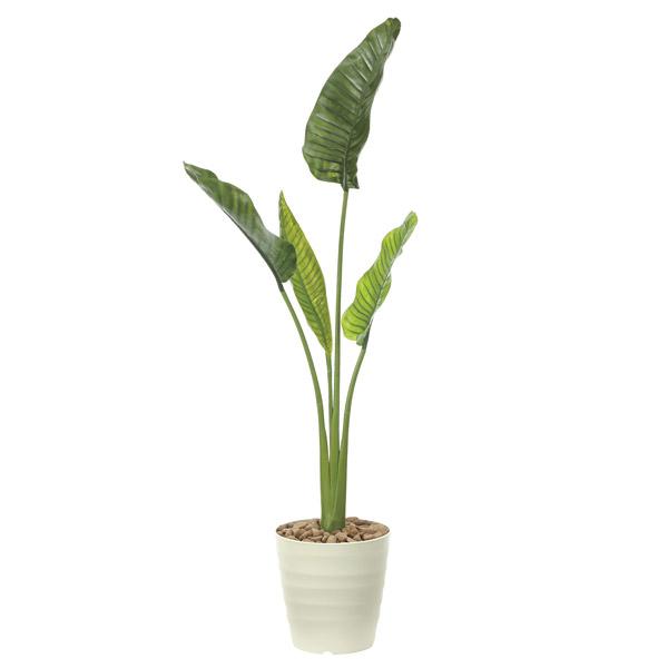 人工観葉植物 観葉植物 屋外対応 フェイクグリーン インテリア 屋外庭園 植栽 人工植物 高さ160cm オーガスタ