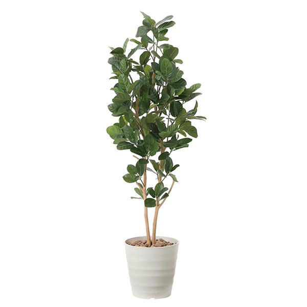 光触媒 観葉植物 植物 人工観葉植物 インテリア おしゃれ グリーン パンの木 高さ160cm