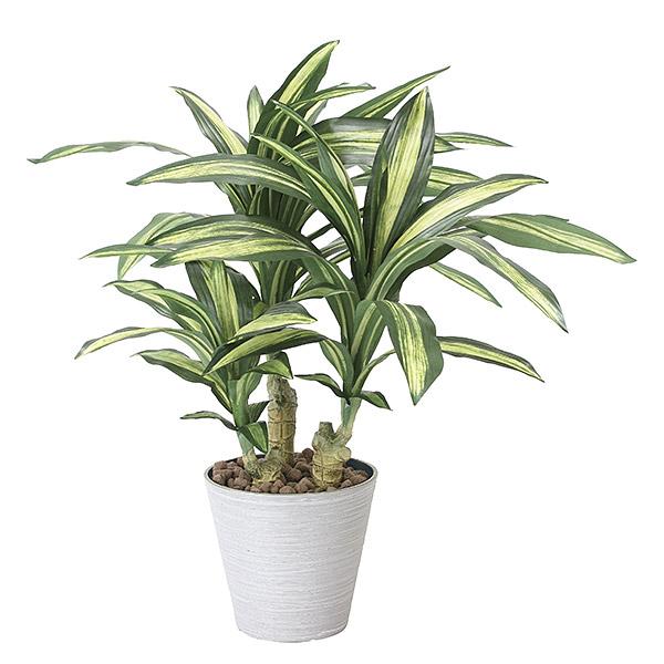 人工観葉植物 光触媒 観葉植物 フェイクグリーン インテリア 人工植物 高さ60cm 消臭 抗菌 防汚 幸福の木