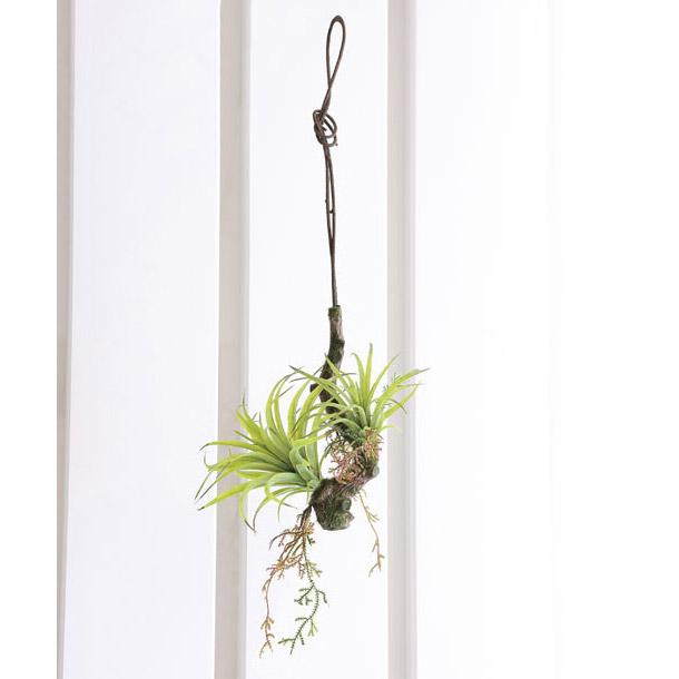 人工観葉植物 ウォール 壁 光触媒 観葉植物 フェイクグリーン インテリア イミテーショングリーン イミテーション 植物 インテリアグリーン モダン 人工植物 エアープランツW 高さ54cm ハンギングタイプ アートグリーン ウォールディスプレイ 雑貨