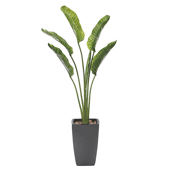 光触媒 観葉植物 植物 人工観葉植物 インテリア おしゃれ グリーン オーガスタ 高さ180cm