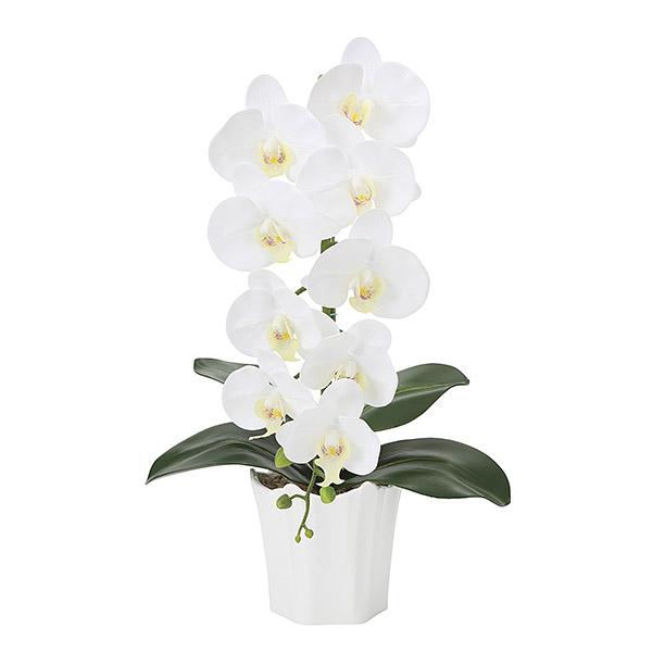 胡蝶蘭 光触媒 インテリア アートフラワー ギフト 造花 人工観葉植物 ホワイト