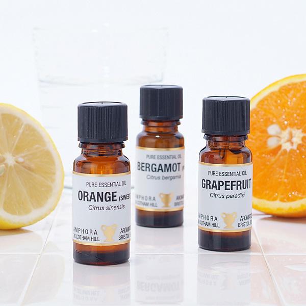 送料無料柑橘のアロマオイルセット 10ml 6本 オレンジ/グレープフルーツ/ベルガモット/マンダリン/レモン/レモングラス