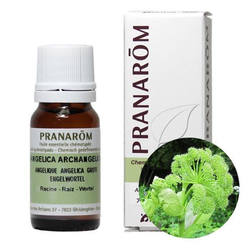 プラナロム/PRANAROM 精油/プラナロム アンゼリカ(ルート) エッセンシャルオイル【プラナロム 精油 送料無料】