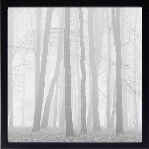 【絵画 アートパネル 壁掛け 専門店】アートフレーム/アートポスター ダグ・チナリー Morning Mists II(アートパネル アートフレーム アートポスター 北欧 絵画 インテリア ポスター 壁掛け)【0824カード分割】