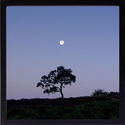 【絵画 アートパネル 壁掛け 専門店】アートフレーム/アートポスター ダグ・チナリー Moonrise(アートパネル アートフレーム アートポスター 北欧 絵画 インテリア ポスター 壁掛け)【0824カード分割】