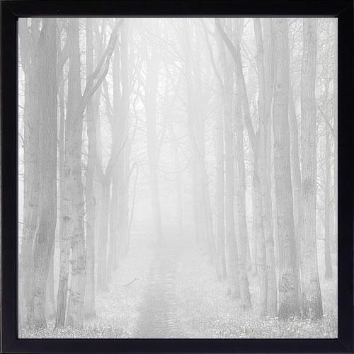 【絵画 アートパネル 壁掛け 専門店】アートフレーム/アートポスター ダグ・チナリー Morning Mists Iii(アートパネル アートフレーム アートポスター 北欧 絵画 インテリア ポスター 壁掛け)【0824カード分割】