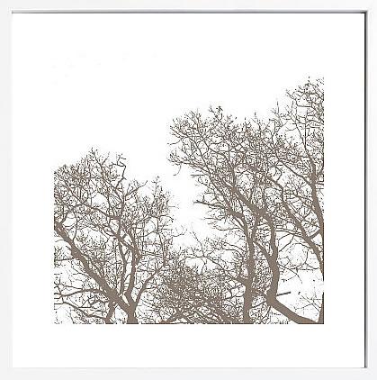 【絵画 アートパネル 壁掛け 専門店】アートフレーム/アートポスター エリン・クラーク Majesty I(アートパネル アートフレーム アートポスター 北欧 絵画 インテリア ポスター 壁掛け)【0824カード分割】