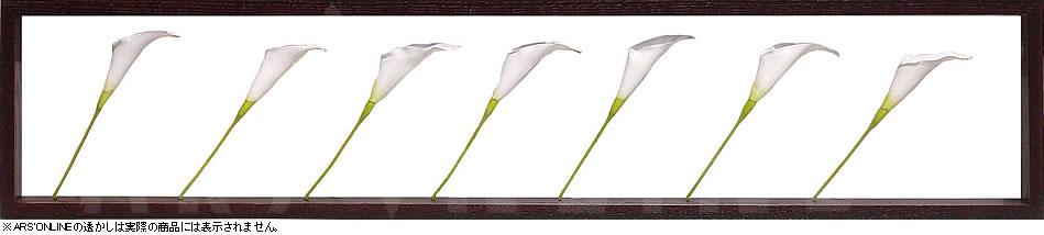 リーフパネル リーフアート 壁掛け アートパネル インテリア タペストリー リーフフレーム ウォールアート アートボード モノトーン モノクロ アンティーク シンプル モダン 北欧 造花 おしゃれリーフパネル カラー