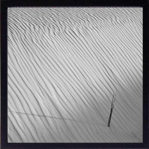 【絵画 アートパネル 壁掛け 専門店】アートフレーム/アートポスター Sainte Laudy Philippeフィアレス(アートパネル アートフレーム アートポスター 北欧 絵画 インテリア ポスター 壁掛け)【0824カード分割】