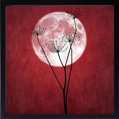 アートパネル アートポスター 絵画 インテリア ポスター タペストリー 壁掛け アートフレーム ウォールアート アートボード モダンアート モノトーン モノクロ アンティーク シンプル 北欧 おしゃれSainte Laudy PhilippeGive Me the Moon