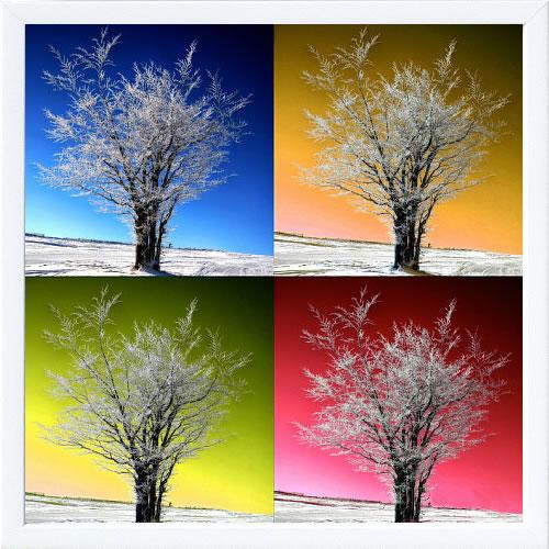 【絵画 アートパネル 壁掛け 専門店】アートフレーム/アートポスター Sainte Laudy PhilippeFour Seasons(アートパネル アートフレーム アートポスター 北欧 絵画 インテリア ポスター 壁掛け)【0824カード分割】