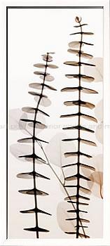 アートパネル アートポスター 絵画 インテリア ポスター タペストリー 壁掛け アートフレーム ウォールアート アートボード モダンアート モノトーン モノクロ アンティーク シンプル 北欧 おしゃれレントゲンアート スティーヴン メイヤーズ EucalyptiI