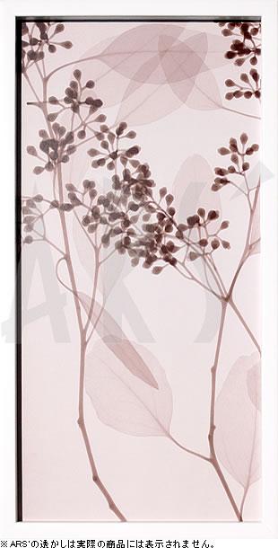 アートパネル アートポスター 絵画 インテリア ポスター タペストリー 壁掛け アートフレーム ウォールアート アートボード モダンアート モノトーン モノクロ アンティーク シンプル 北欧 おしゃれレントゲンアート スティーヴン メイヤーズ EucalyptusIII