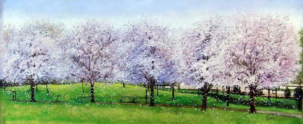 絵画 油絵 お歳暮 桜咲く公園 期間限定の激安セール