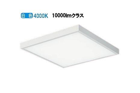 大光電機 直付型ベースライトLZB-92975NW 受注生産品