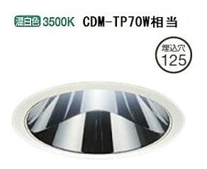 大光電機LEDダウンライト(受注生産品)(電源装置別売)LZD92010AW