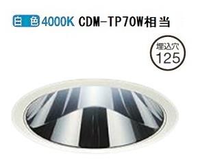 大光電機LEDダウンライト(電源装置別売)LZD92011NWE