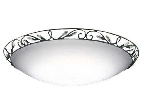 競売 AH48896Lコイズミ照明LEDシーリング AH48896L, 福富町:d24c9057 --- adrianab.com.br