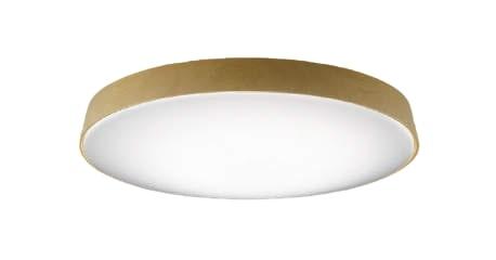 コイズミ照明LEDシーリング AH48976L【代引支払・時間指定・日祭配達・他メーカーとの同梱及び返品交換】不可