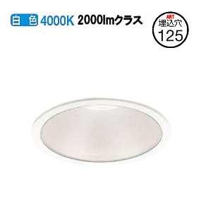 コイズミ照明 LEDダウンライトAD49682L