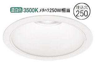 オーデリック LEDダウンライト(受注生産品)XD301135軒下使用可