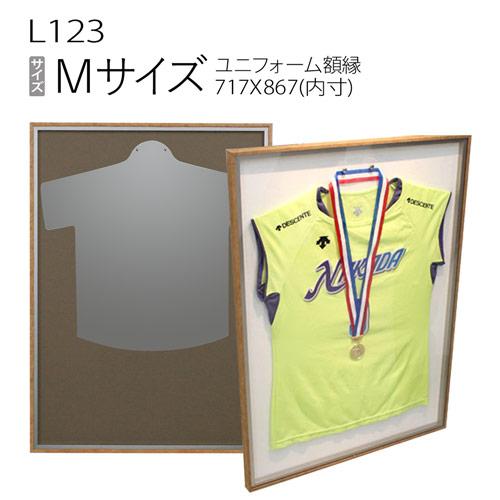 ユニフォーム額縁:L116 (旧P116)
