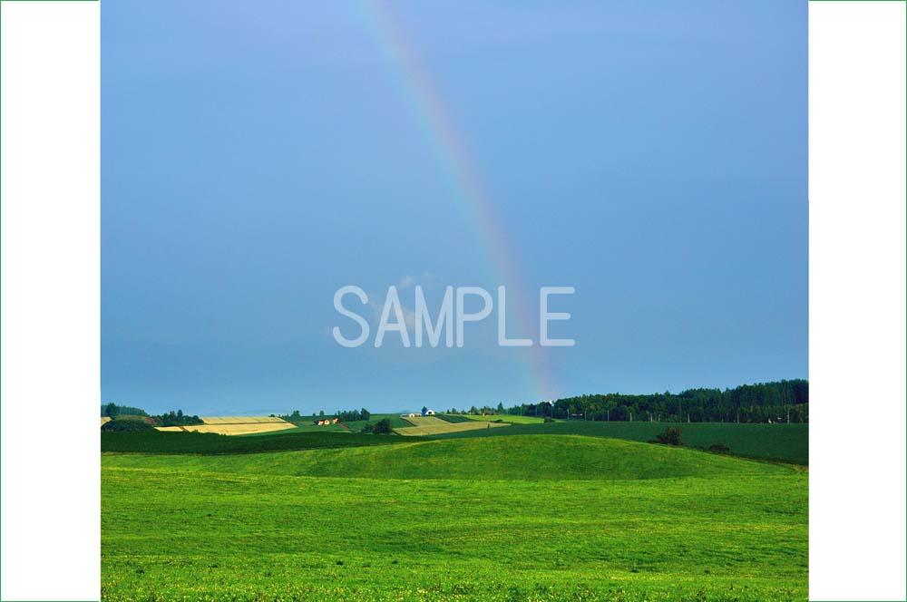 永遠の定番モデル ポスター インテリア 壁飾りに美しい風景写真を ディスプレイ 模様替えに最適 夕方間際の雨上がりに美瑛の虹 北海道 驚きの値段で 2LW写真 2LW-370 ギフトや記念日のプレゼントなどにも