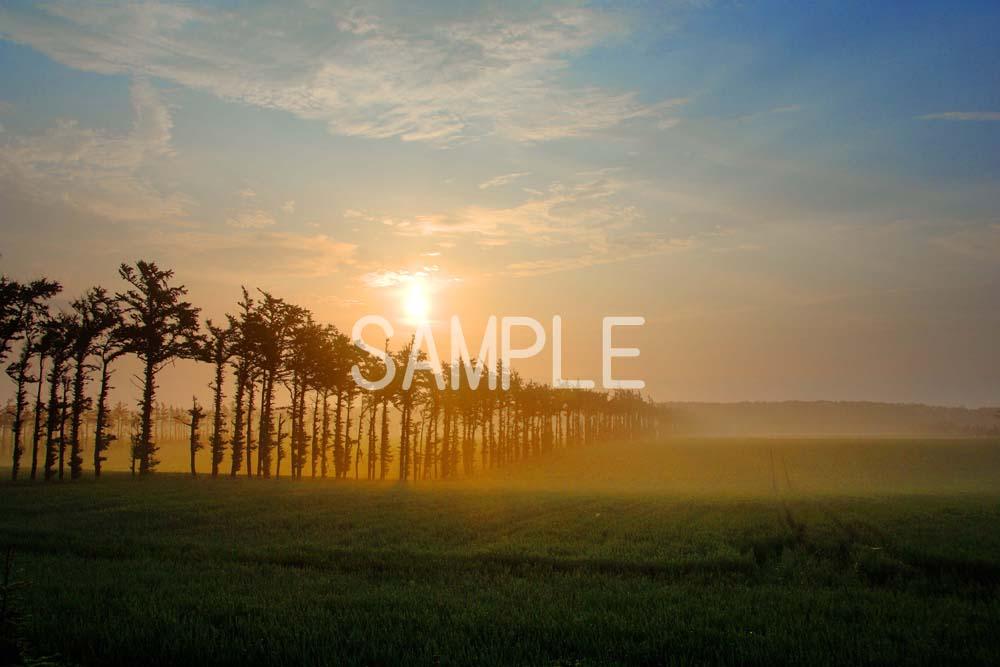 風景写真ポスター  北海道斜里郡小清水町の朝日 osp-93