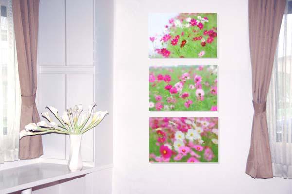<title>壁飾りやインテリアに美しい風景写真パネルを ディスプレイ 模様替え タペストリー 風景ポスターに最適 激安通販ショッピング 新築祝い 引っ越し祝いプレゼントなどにも コスモス 3枚セット 写真パネル 42×30cm HN-019-A3壁飾りやインテリアに美しい風景写真パネルを</title>