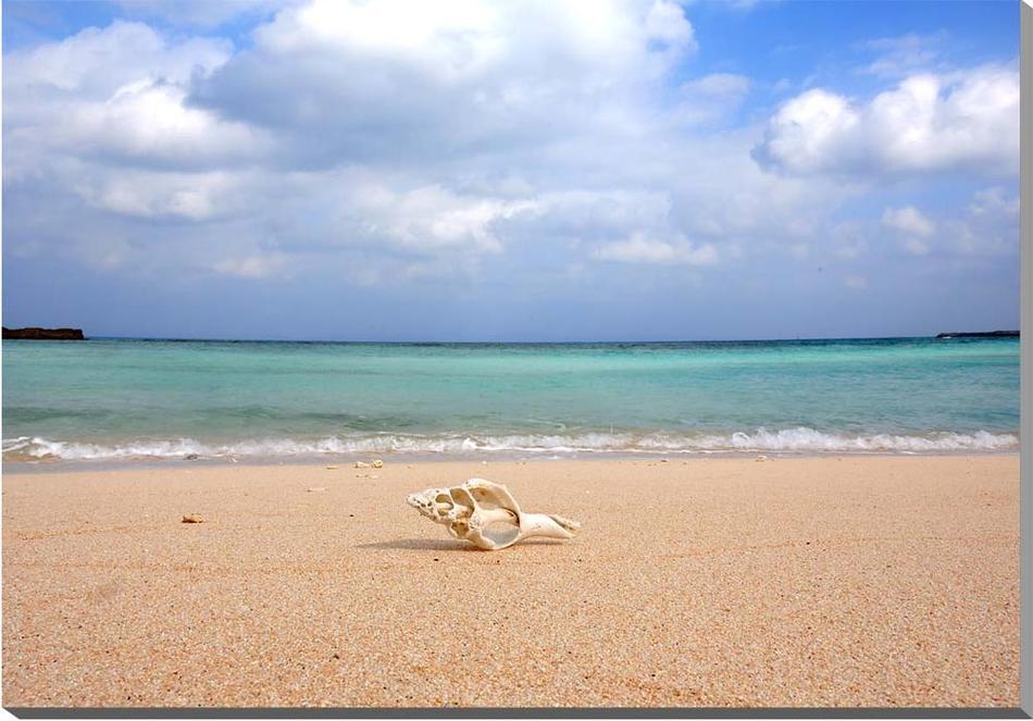 ウォールデコ アートパネル グラフィックアート インテリア 風景写真パネル 新築祝い 引っ越し祝い 結婚祝い 記念日 プレゼント ギフト メーカー在庫限り品 旅の思い出 風水 絵画 タペストリー 壁飾り RAN-11-M25 波照間島 ポスター ニシ浜のエメラルドグリーンの海と巻貝 沖縄 アート パネル 美しい風景写真 風景 額要らず 砂浜 メーカー公式ショップ 最南端 壁掛け