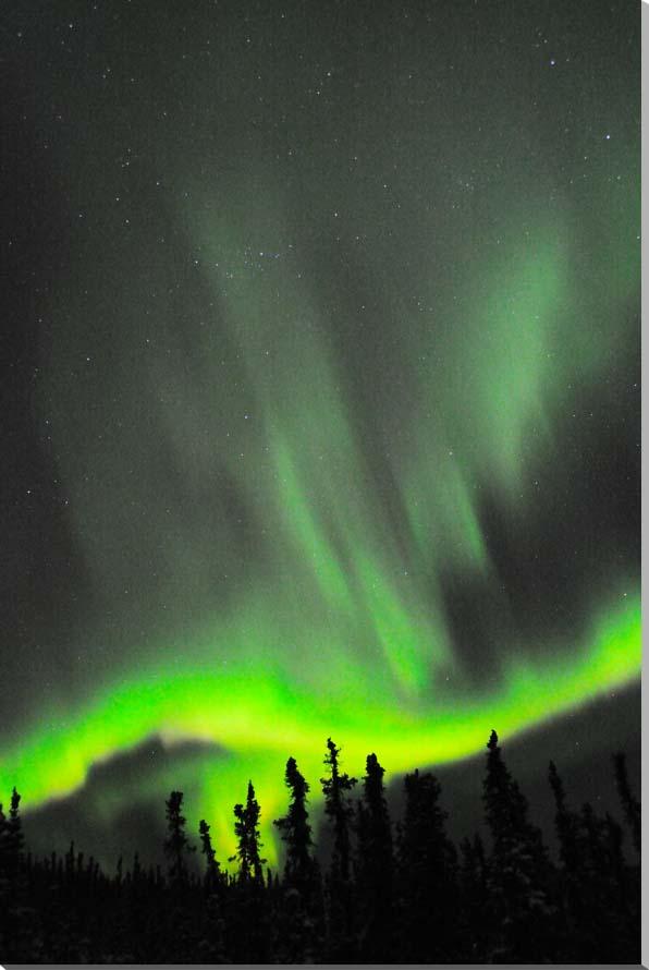 オーロラ/アラスカ 風景写真パネル 65.2×45.5cm AUR-24-M15
