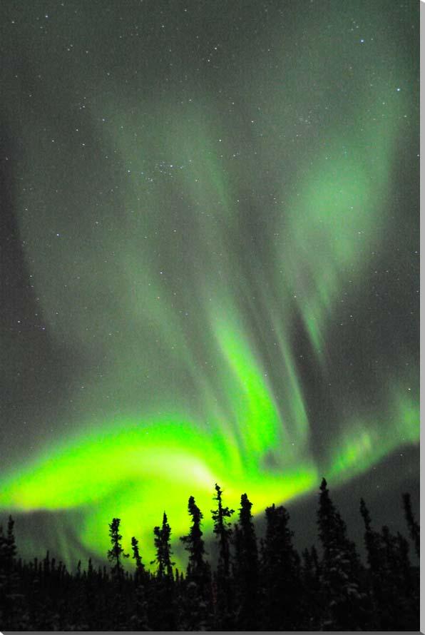 オーロラ/アラスカ 風景写真パネル 72.7×50cm AUR-25-M20