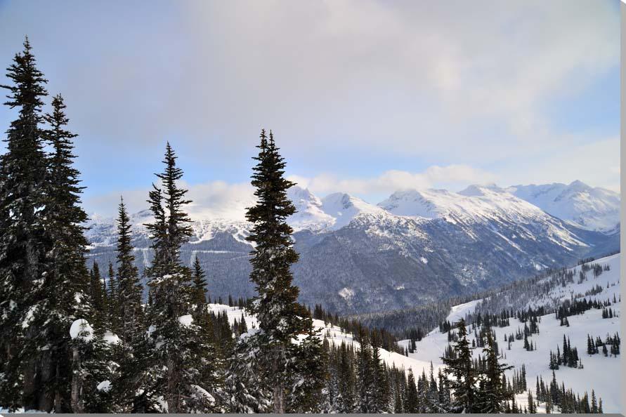 カナダ・ウィスラーの雪山 風景写真パネル 65.2×45.5cm AUR-38-M15