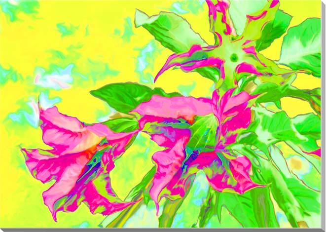 エンゼルトランペット 花 CG写真パネル 80.3×60.6cm CG-008-P25 ギフト 贈り物 インテリアアート アートフォト