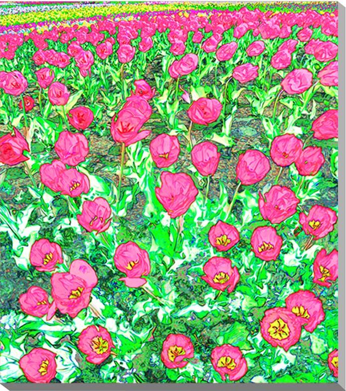 チューリップ 花 CG写真パネル 80×70cm CG-001 ギフト 贈り物 インテリアアート アートフォト