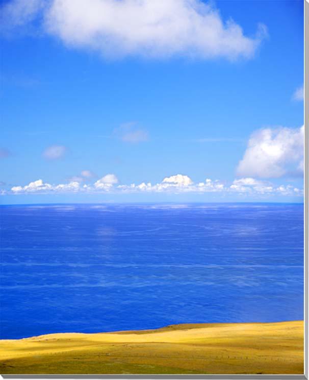 世界遺産イースター島 草原と大きく渦巻く海 風景写真パネル