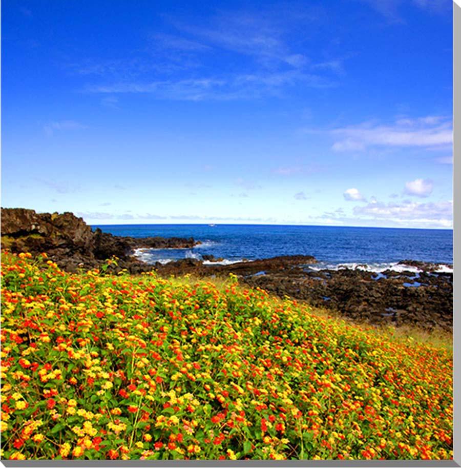 お見舞い お祝いギフトに 額要らずの壁飾り インテリア 壁掛け 贈物 アート パネル ポスター 風景写真パネル 絵画 世界遺産イースター島 草原と大きく渦巻く海 風景 写真パネル
